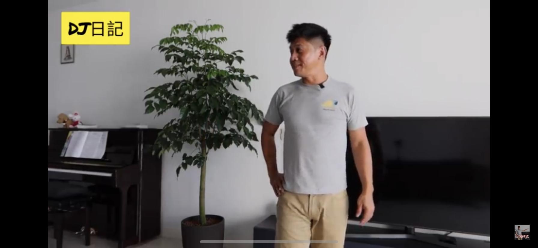 Johnny在吉隆坡的新家,大廳有足夠空間擺放鋼琴及種樹。(片段截圖)