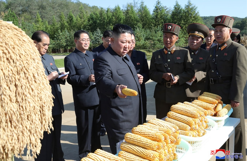 金正恩時隔27天再次公開露面,視察部隊農場, 稱解決吃飯問題要有決定性轉變。(網圖)
