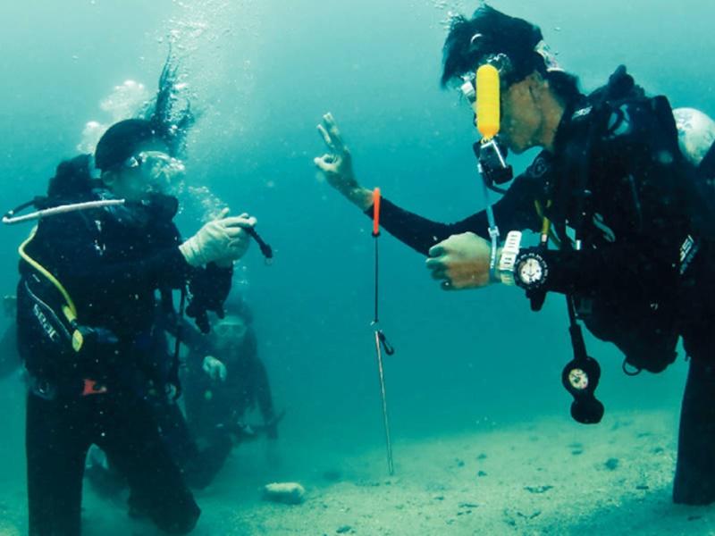 現時教授潛水的相關課程成行成市,惟水下狩獵課程因保護環境之故,近年買少見少。