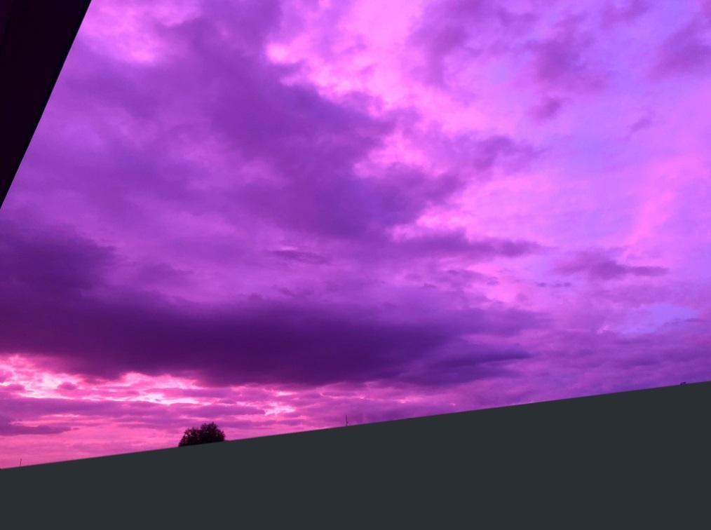 天空一片紫色。網民圖片