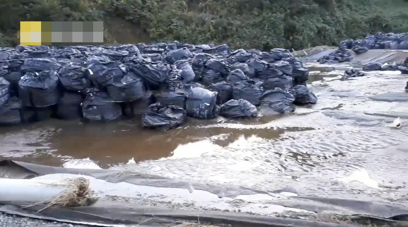 福島核污染物被洪水沖走,當局無法確認被沖數目。網圖
