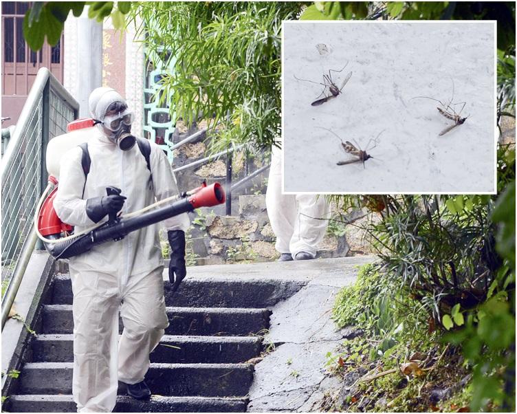 署方提醒市民,由於今年秋季溫度仍然偏高,要做好防蚊措施。 資料圖片