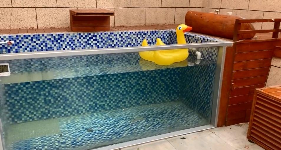 豪華狗別墅有泳池。影片截圖
