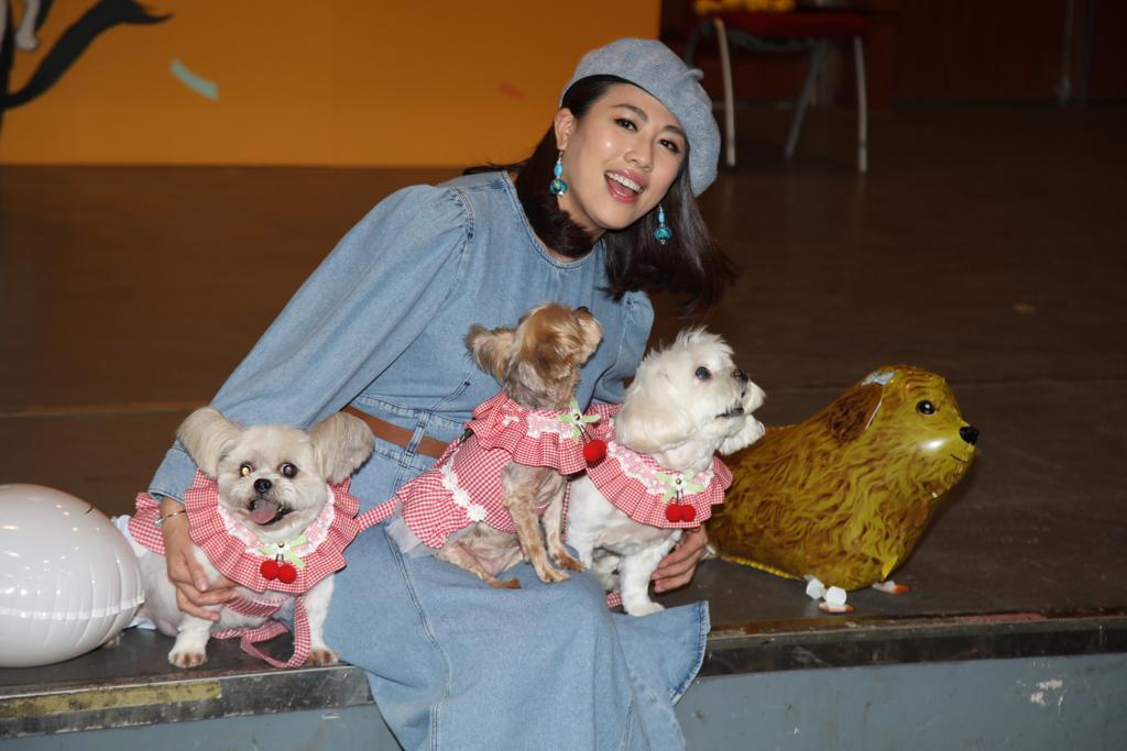 陳彥行中一隻狗仔花了10萬元醫眼和裝義眼。