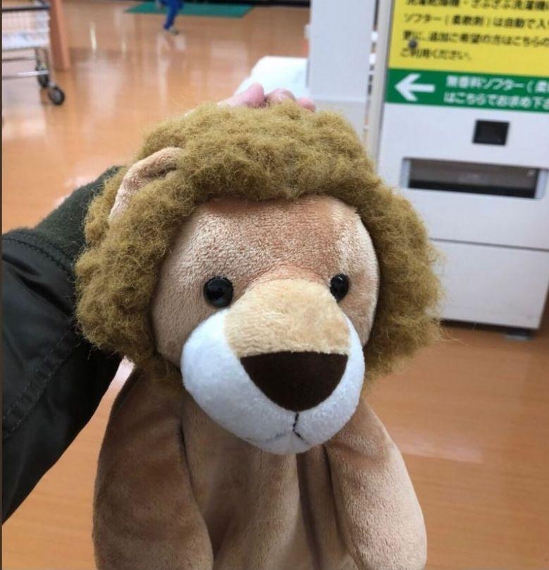 從乾衣機取出後獅子無𦍬變了一頭攣髮。twitter