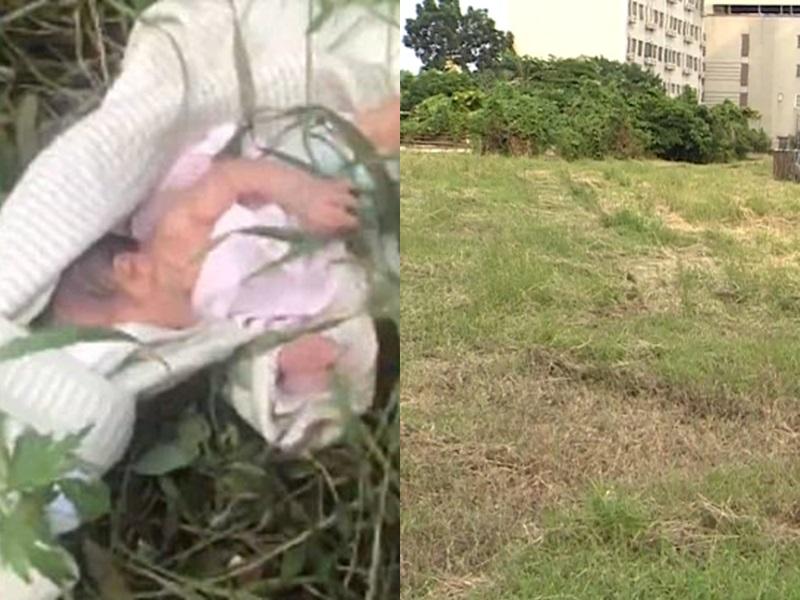 台灣情侶,將自己的初生嬰兒抛棄在草地裡面自生自滅。網圖/示意圖