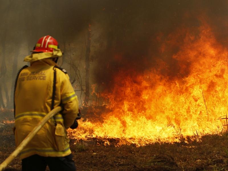 澳新南威爾士山火嚴峻  ,宣布進入緊急狀態。AP