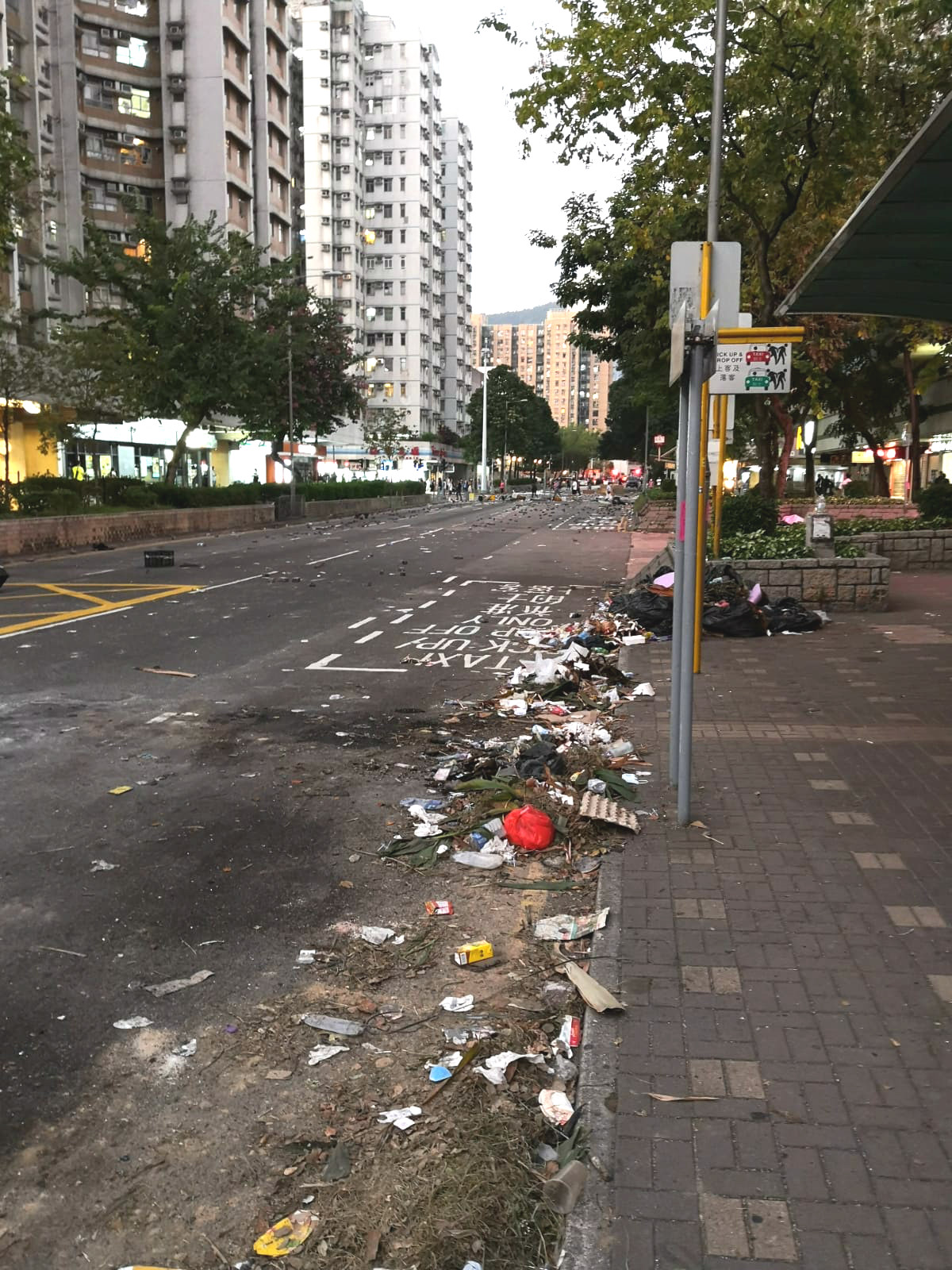 大埔多處馬路受阻。市民提供
