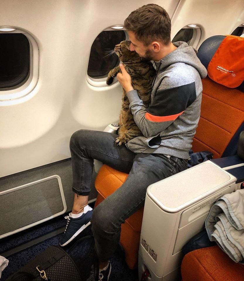 男飼主的貓體重超出航空公司規定。