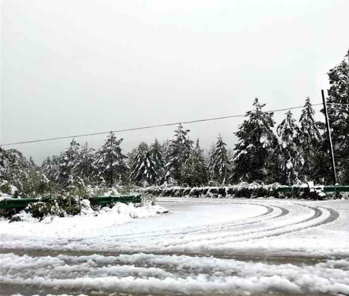 黑龍江省由昨日至今晨大範圍落大雪。資料圖片