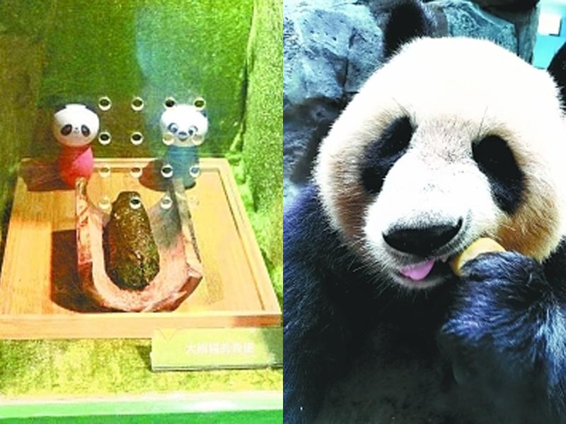 湖北武漢動物園,近日推出聞熊貓便便的體驗服務,遊客可以通過小孔聞到新鮮的熊貓便便。(網圖)