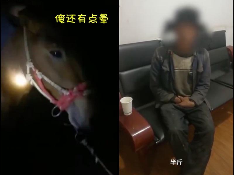 劉男平時很愛飲酒,也是愛馬之人,早前用9800元人民幣買了一批馬回來。網圖