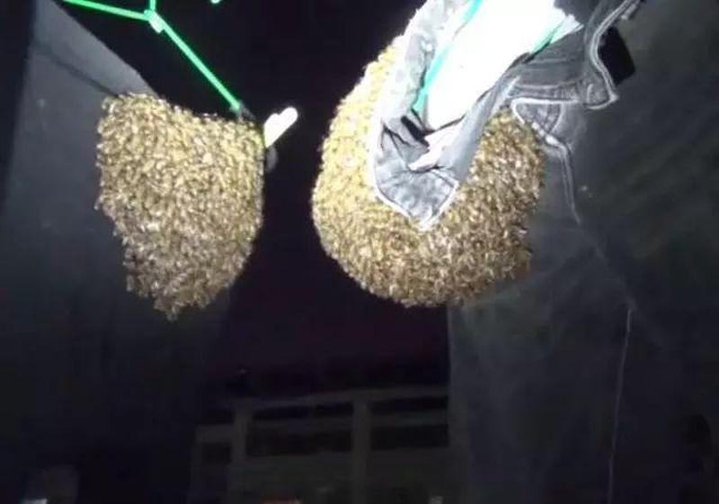 牛仔褲上突然出現千隻蜜蜂,嚇得大媽驚慌失措。(網圖)