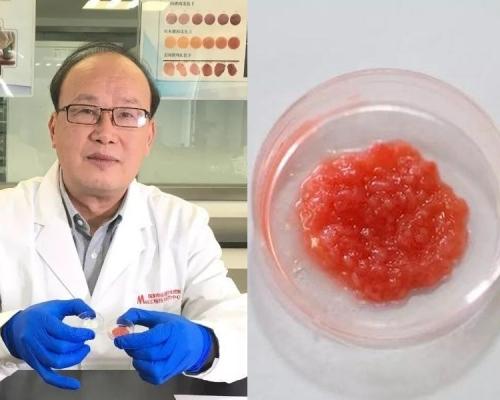 南京農業大學研發出中國第一塊人造培養肉