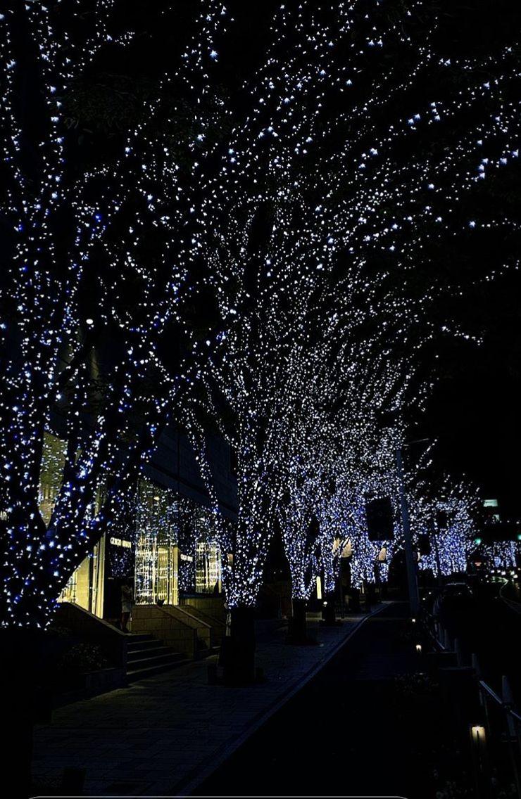 東京開始有聖誕靚景啦。