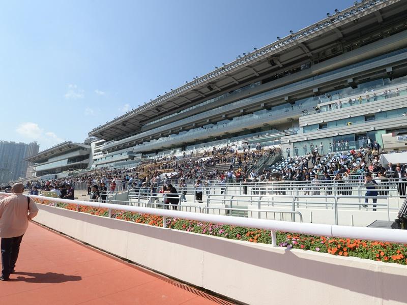 香港國際賽破紀錄全日投注額逾17億。資料圖片