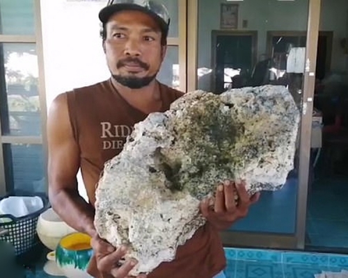 泰國拾荒男撿到灰色怪石 竟是價值521萬「龍涎香」