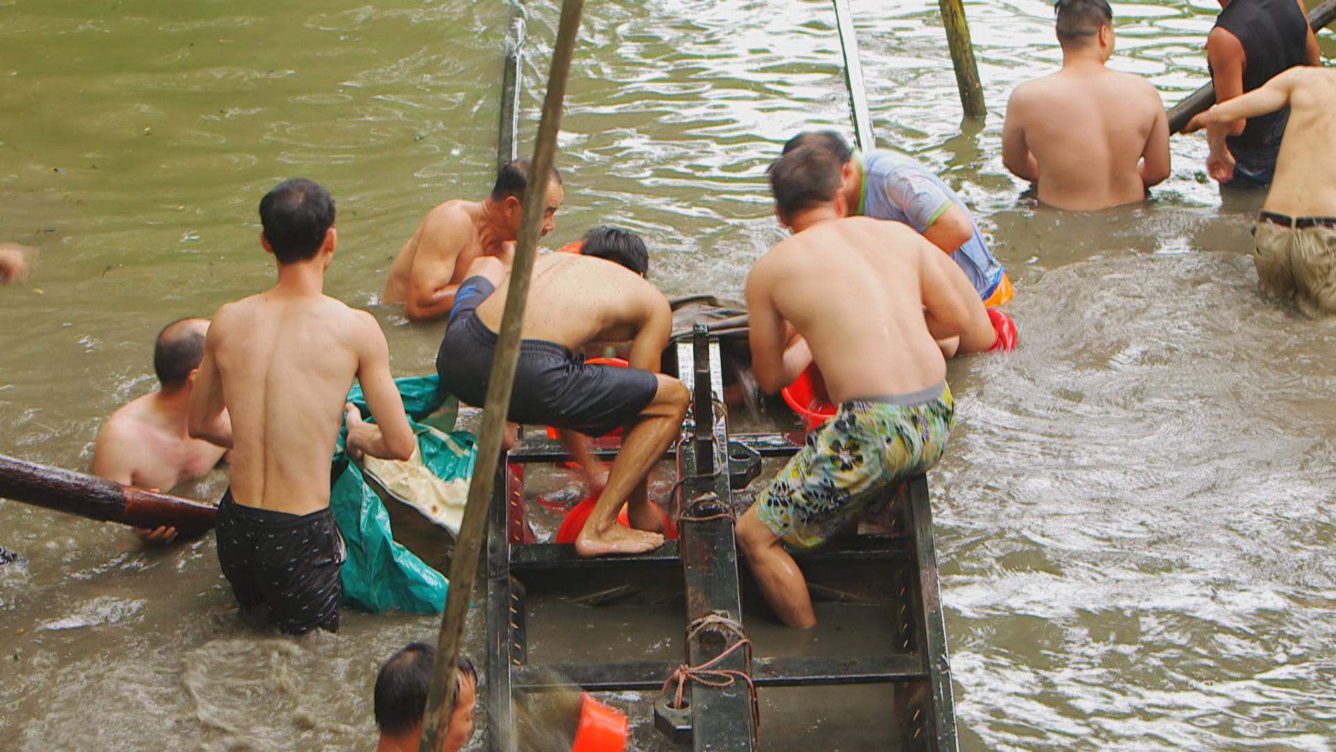 鼎爺話以前龍舟多用坤木(坤甸木)做,但唔可以長期曝曬,會放在河底埋在泥漿底保養,端午節前要動用多人起出來。
