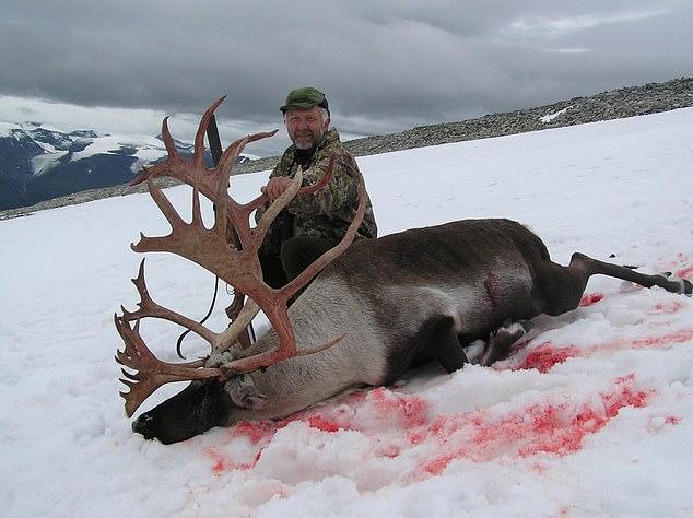 被猎杀的驯鹿皮毛均沾上血迹。网图