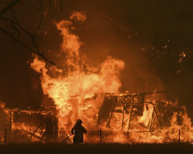 至今山林大火已焚烧了最少300万公顷土地。