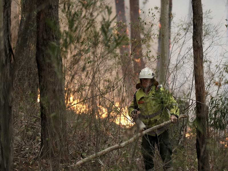 澳洲山火持续,消防员奋力救火。