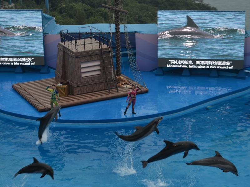 海豚表演將會畫上句號。資料圖片