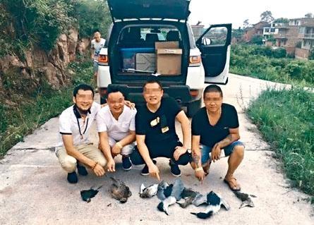 捕杀受保护野生动物在中国属刑事罪行