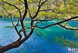 地震前的火花海,湖水湛藍,閃閃發光。