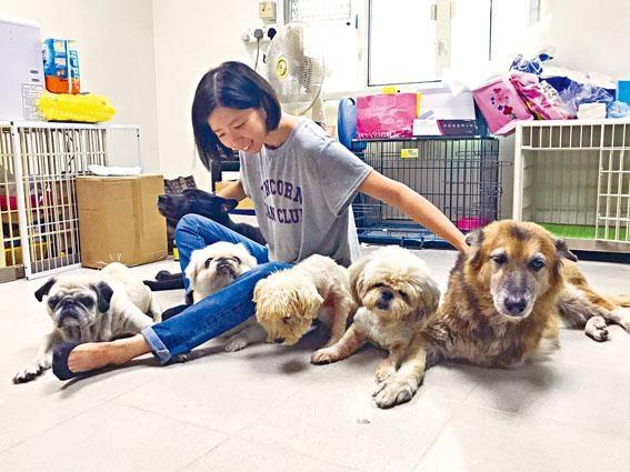 「阿棍屋」創辦人謝婉儀(Ivy)希望幫到狗,也幫到人。