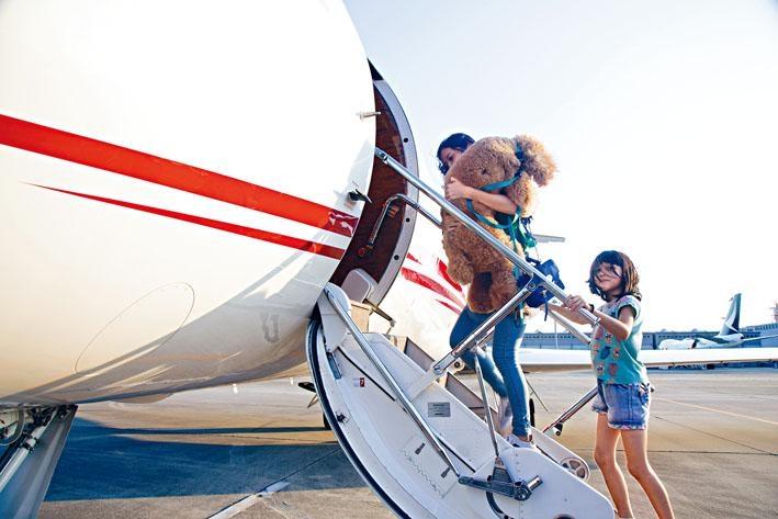 狗狗可跟隨主人上機,一路上互相陪伴。