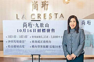 香港興業陳秀珍表示,沙田尚珩以招標形式推售12伙,本月16日截標。