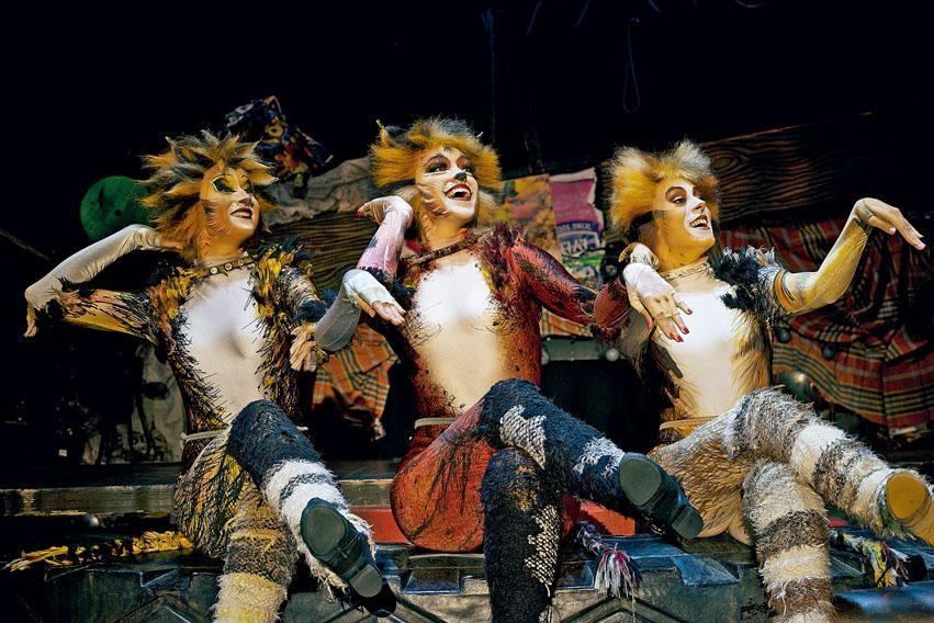 貓男貓女逐個登場,輪流又唱又跳。