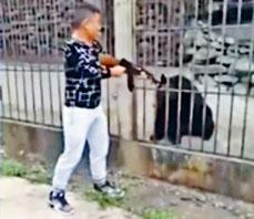 ■男子持槍向黑熊頭部開槍。
