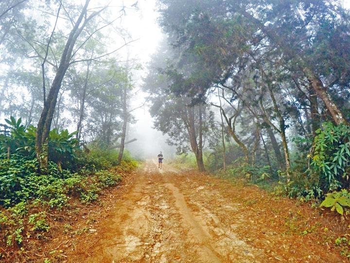 泰國清邁的越野跑賽事,沿途經過國家公園的高山林地,愈是往上跑,景色愈美。