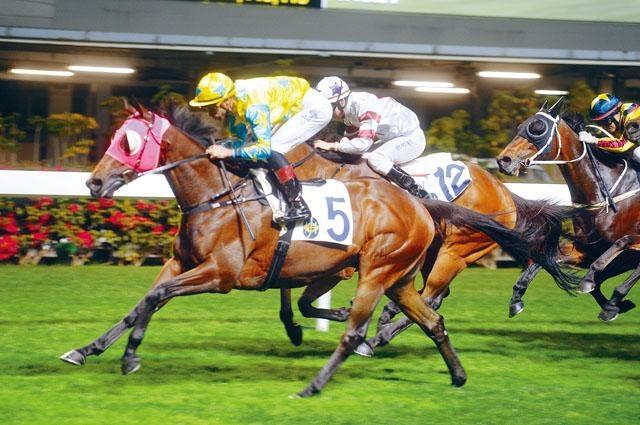 「金童」上仗贏馬姿態出色,只加五分看來阻力不大,再接再厲有力連捷。