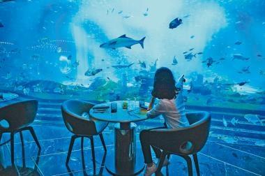 三亞海棠灣  迷失海底世界