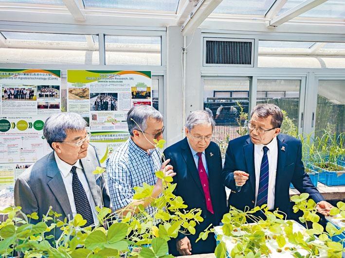 中大校長段崇智帶領傳媒參觀中大農業生物技術國家重點實驗室夥伴實驗室。