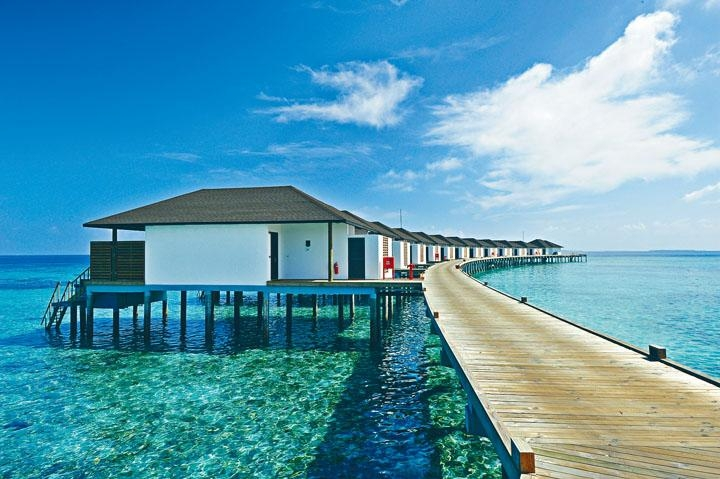 ●這一帶海面的珊瑚保持完好,從水中屋下水較為輕鬆方便。