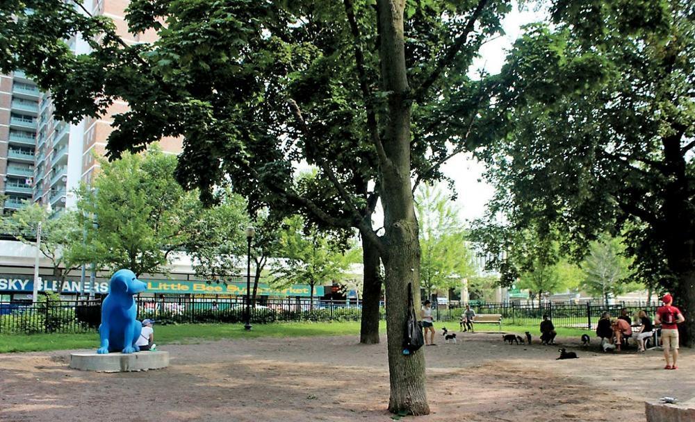 居民抱怨艾倫花園現在常見垃圾和針頭滿地,且時有暴力衝突。多市府官網