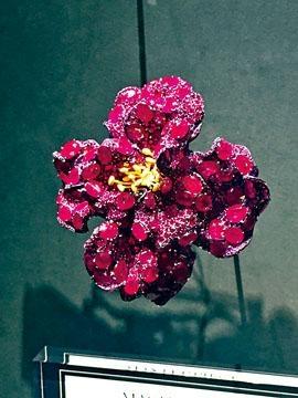 紅寶石牡丹胸針,以牡丹花為藍本創作,甫展出即榮獲大會頒予「傑出展品獎」。