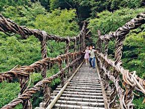 木哥及杏子踏在由藤蔓及木條構建而成的男橋,絕對是一步一驚心。