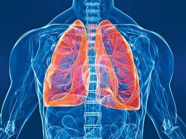 肺癆禍及其他器官?