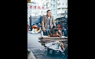 myTV SUPER聖誕新年電影推介 首部動保大電影《毛俠》今日上架