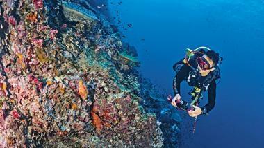 斯米蘭群島 泰國頂級潛點