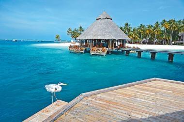 馬爾代夫 朝聖海底餐廳