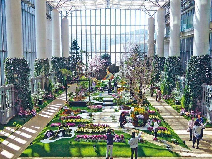 奇迹之星植物館是個大型溫室植物館。