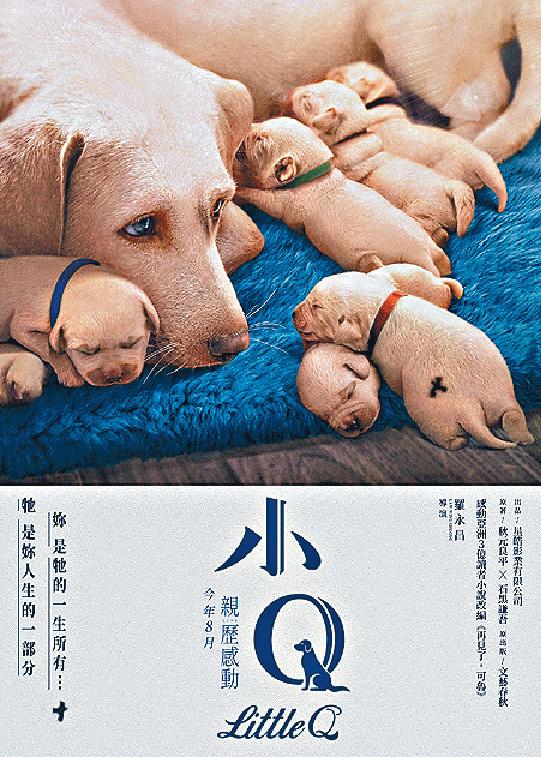 ■電影《小Q》希望令更多人關注導盲犬對眼疾人士的重要性。