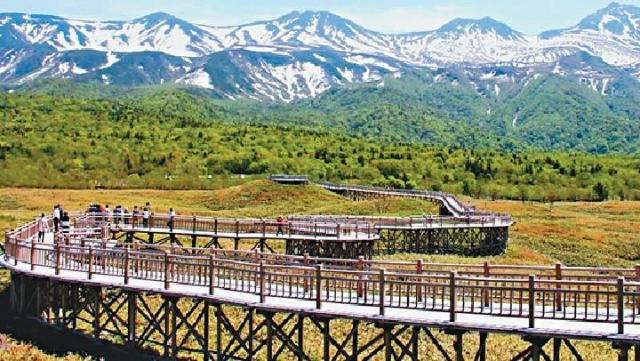 ■知床「一湖」的高架木棧道。