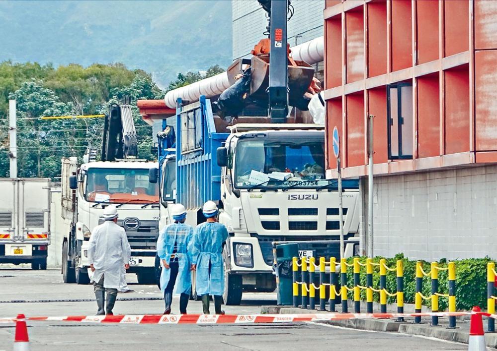 荃灣屠房: 6515豬隻完成銷毀 上水屠房周一重開 -- 星島日報