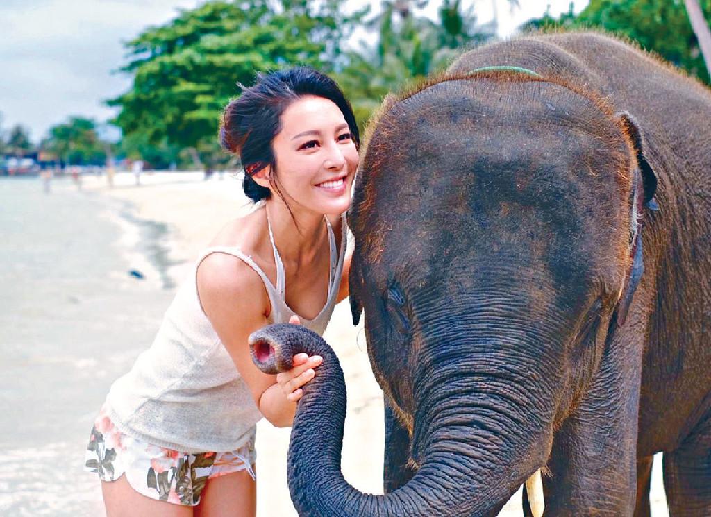 ■Kelly被可愛小象踩腫咗隻腳,冇陰功囉。